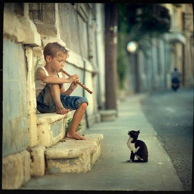 Cat listening to boy playing flute