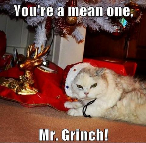 Cat Christmas You are a mean one Mr Grinch