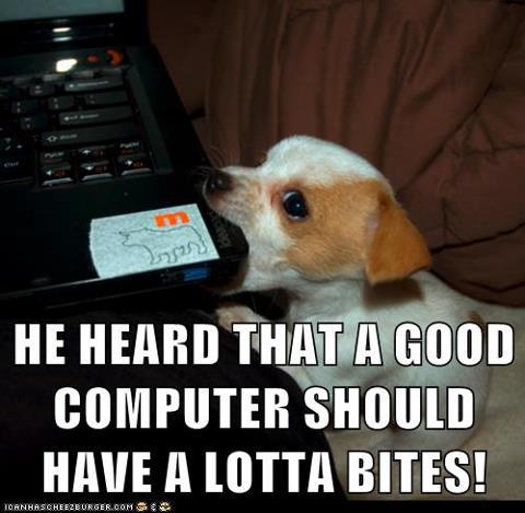 Puppy dog bytes PC