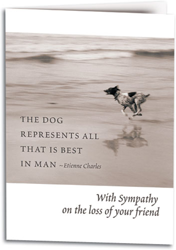 With sympathy on the lost of your dog