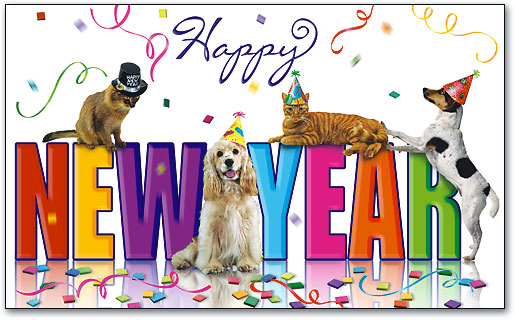 Dogs   Cats   Happy New Year